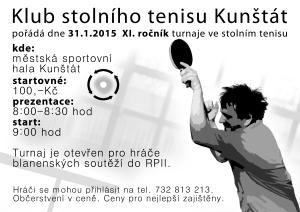 pinec_plakát2015